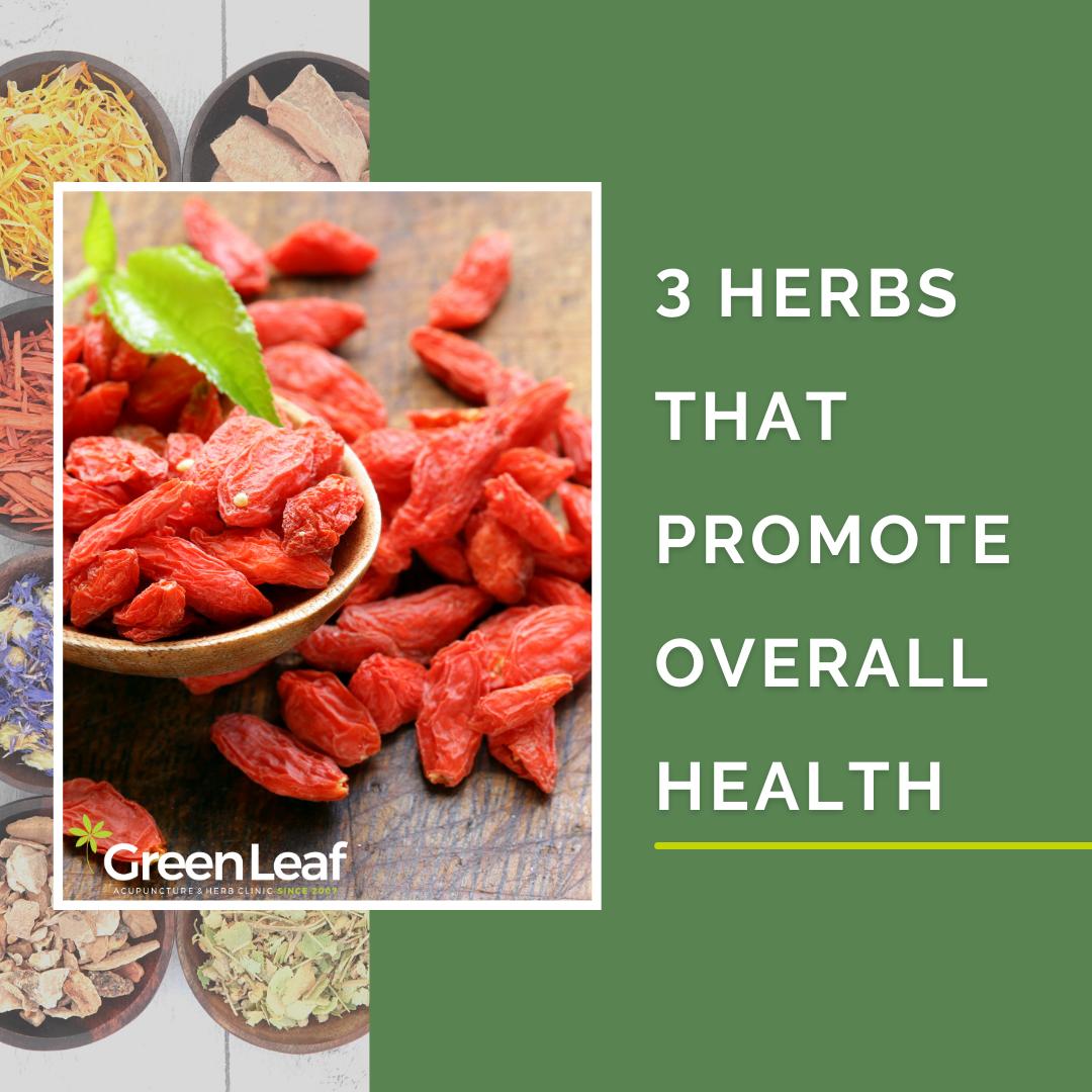 greenleaf acupuncture clinic, herbal medicine, ginseng, goji berries
